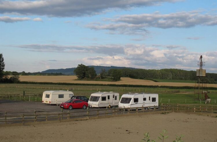 Bluebell Camping 1