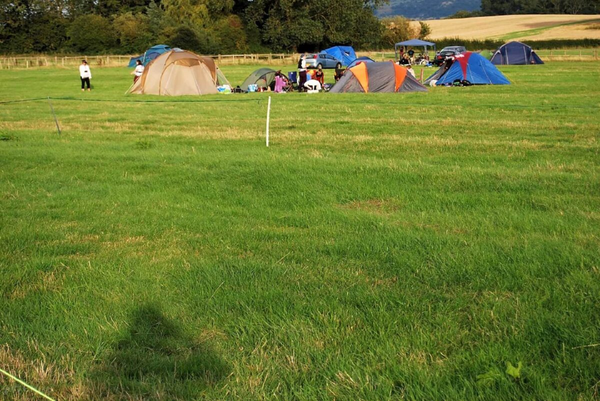 Bluebell Camping 2