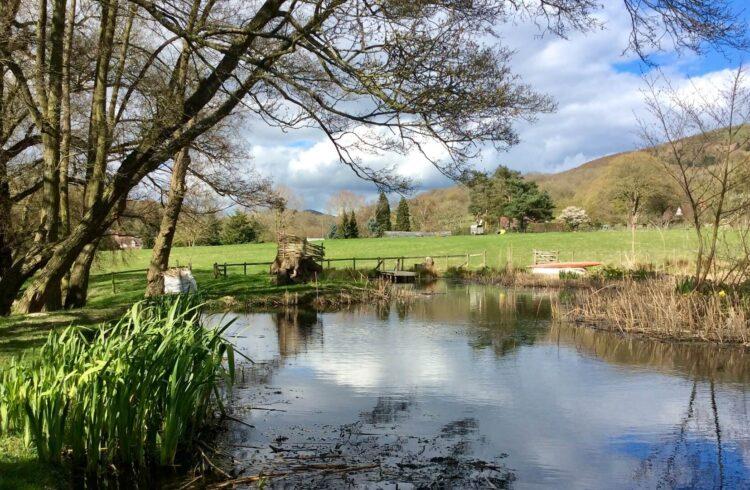 Camping Malvern Hills 1