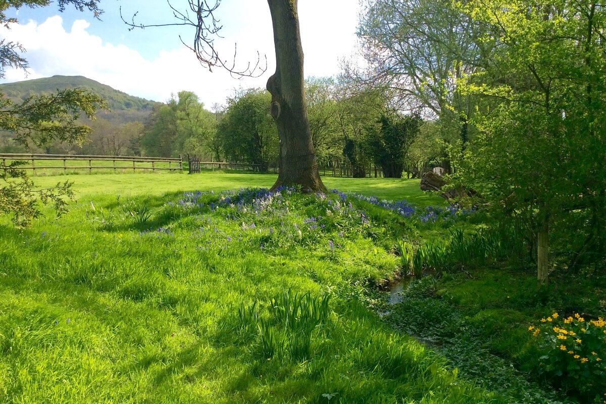 Camping Malvern Hills 5