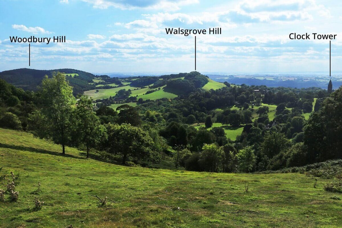 Great Witley Walk