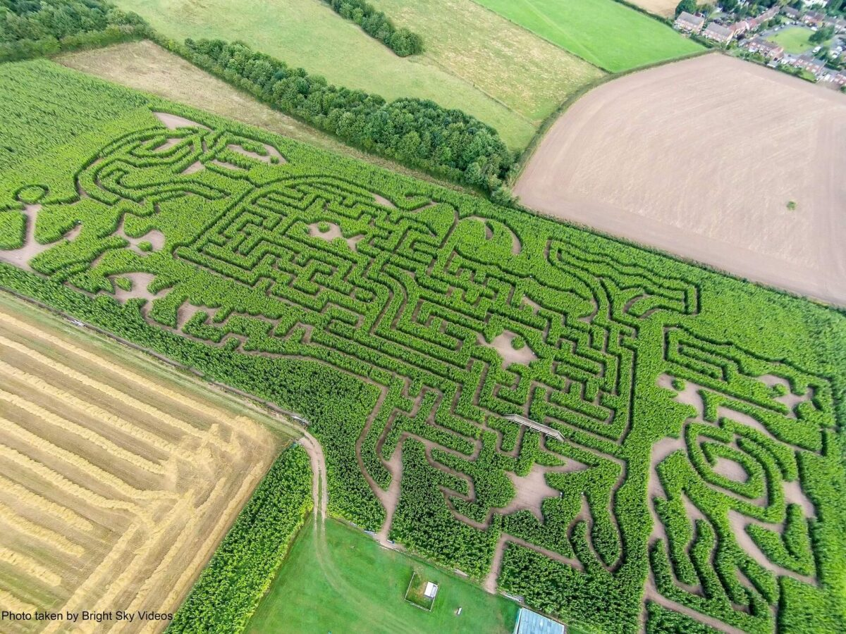 Great Worcester Maize Maze 2