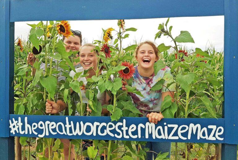 Great Worcester Maize Maze