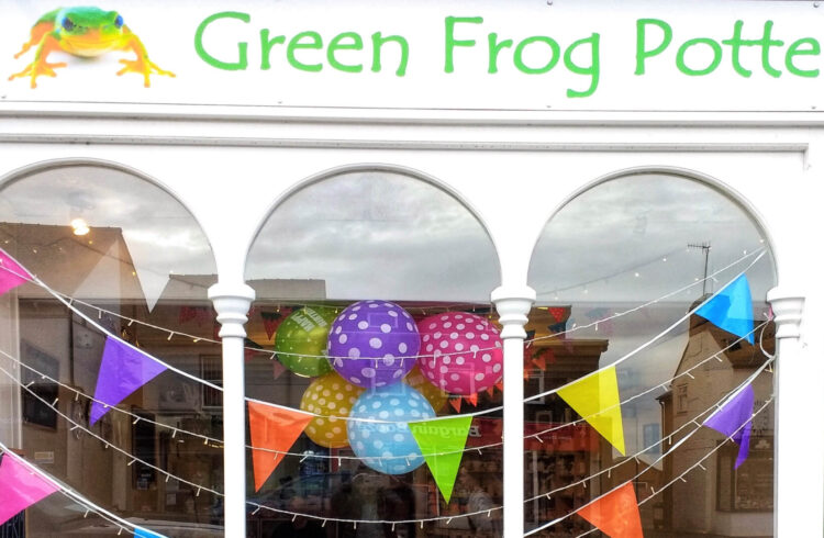 Green frog Pottery cover shop 1