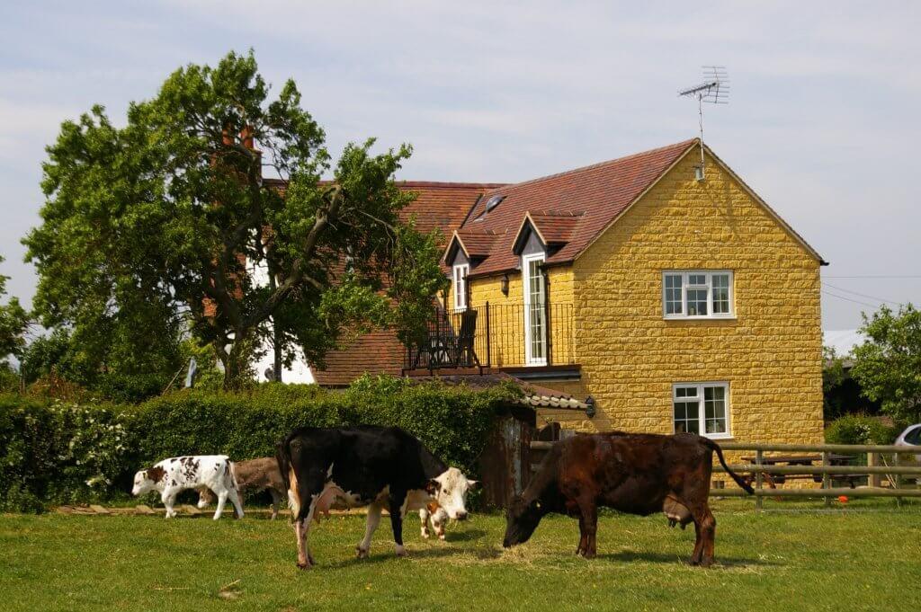 Hillside Cottage 1