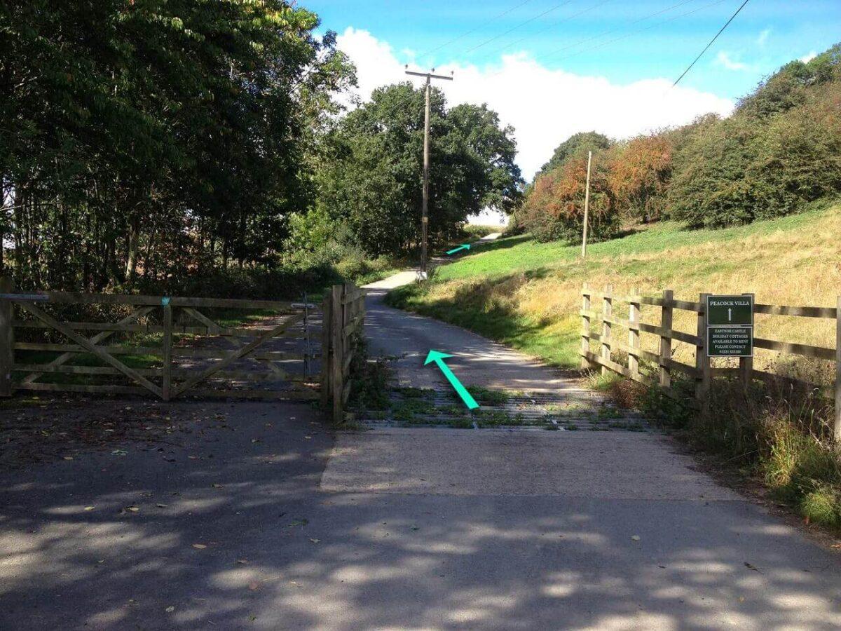 Hollybush Walk