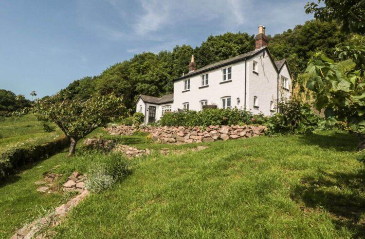Lilac Cottage Banner