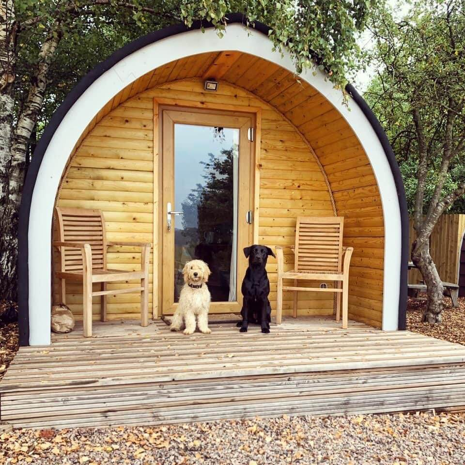 Mikes Meadow Glamping 5