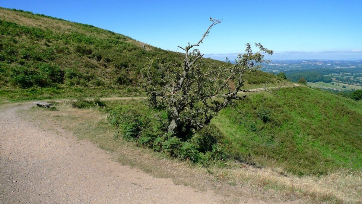 North Hill Trail