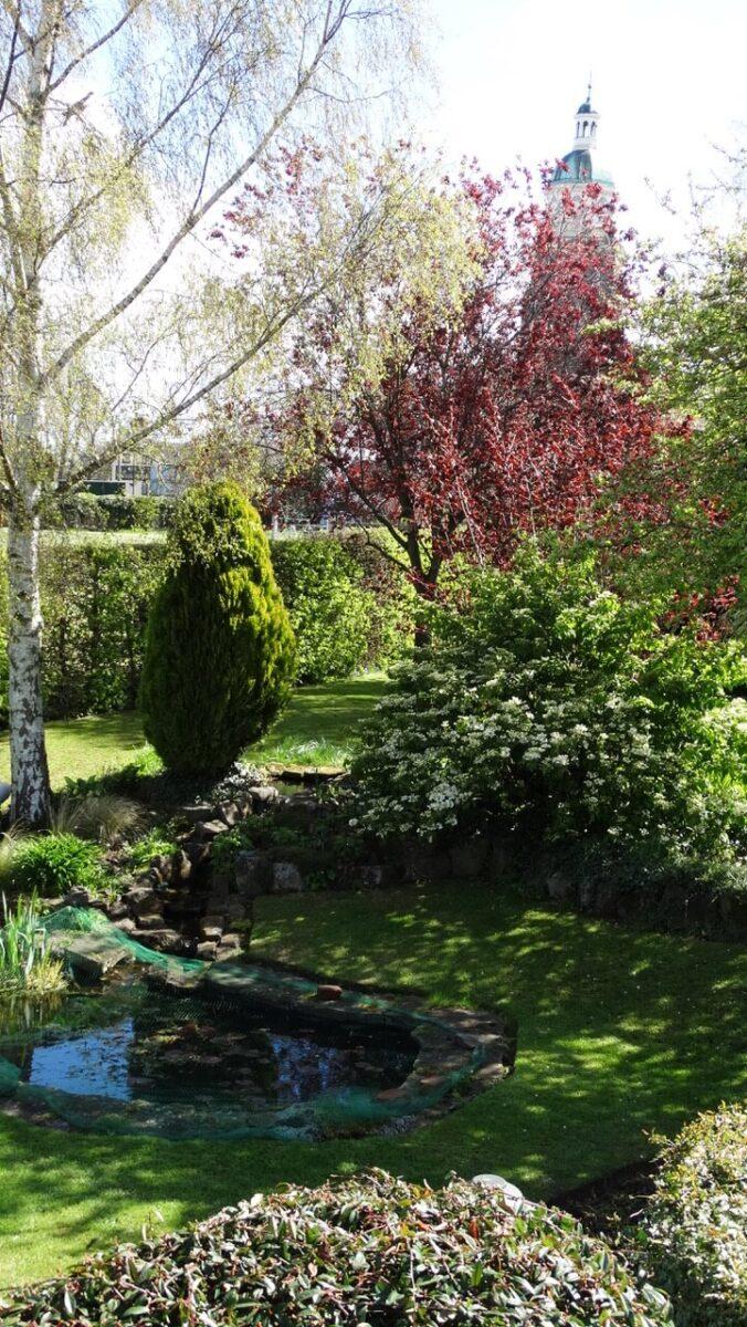 Pool Cottage 4