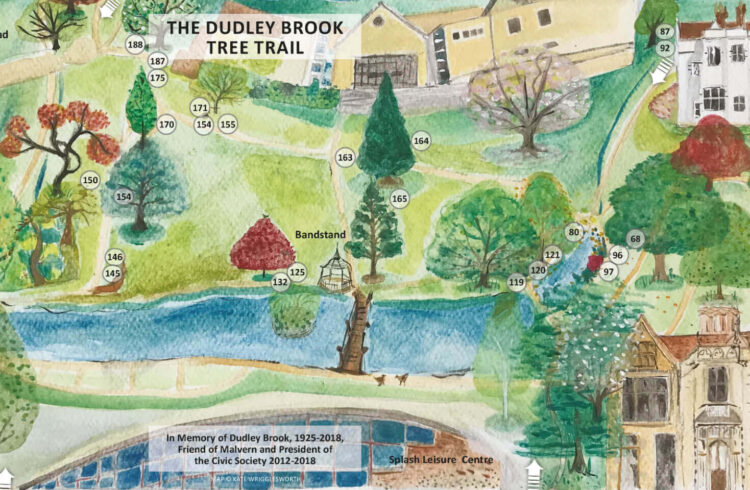 Dudley Brook Tree Trail