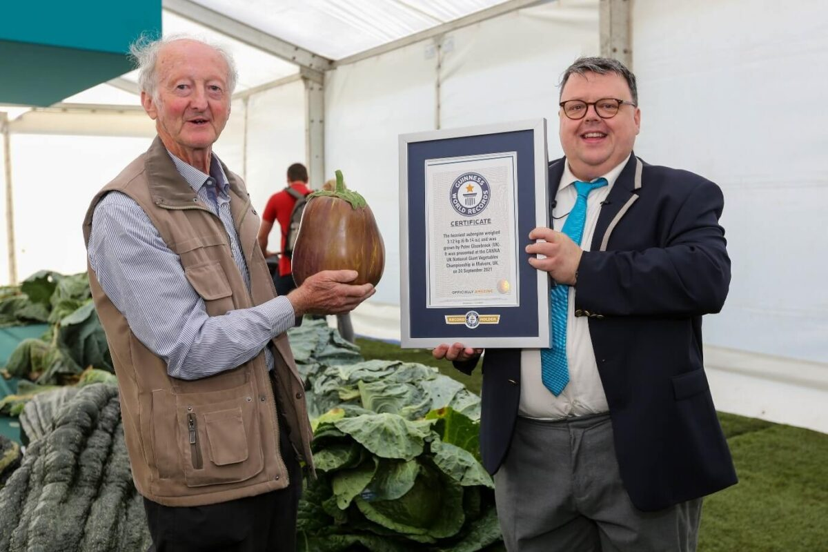 Guiness Awards at Malvern Show